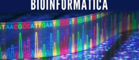 Bioinformática en el Aula