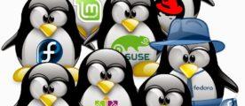 Software Libre y Economía Social y Solidaria
